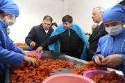Kyrgyzstan: PM visits USAID-supported Kyrgyz-Tajik dried fruit processing JV