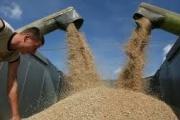 Hungarian experts to train Kazakh farmers